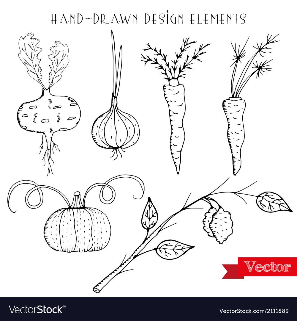 Hand drawn design elements vector | Price: 1 Credit (USD $1)