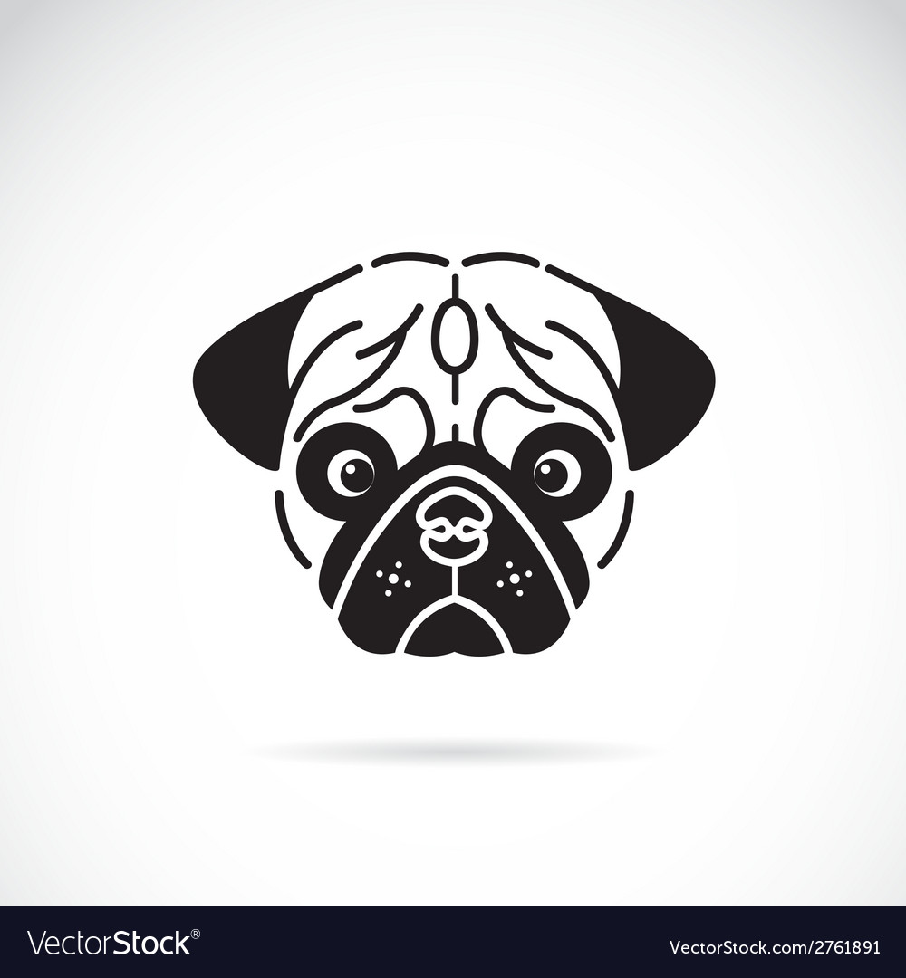 Pugs face vector | Price: 1 Credit (USD $1)