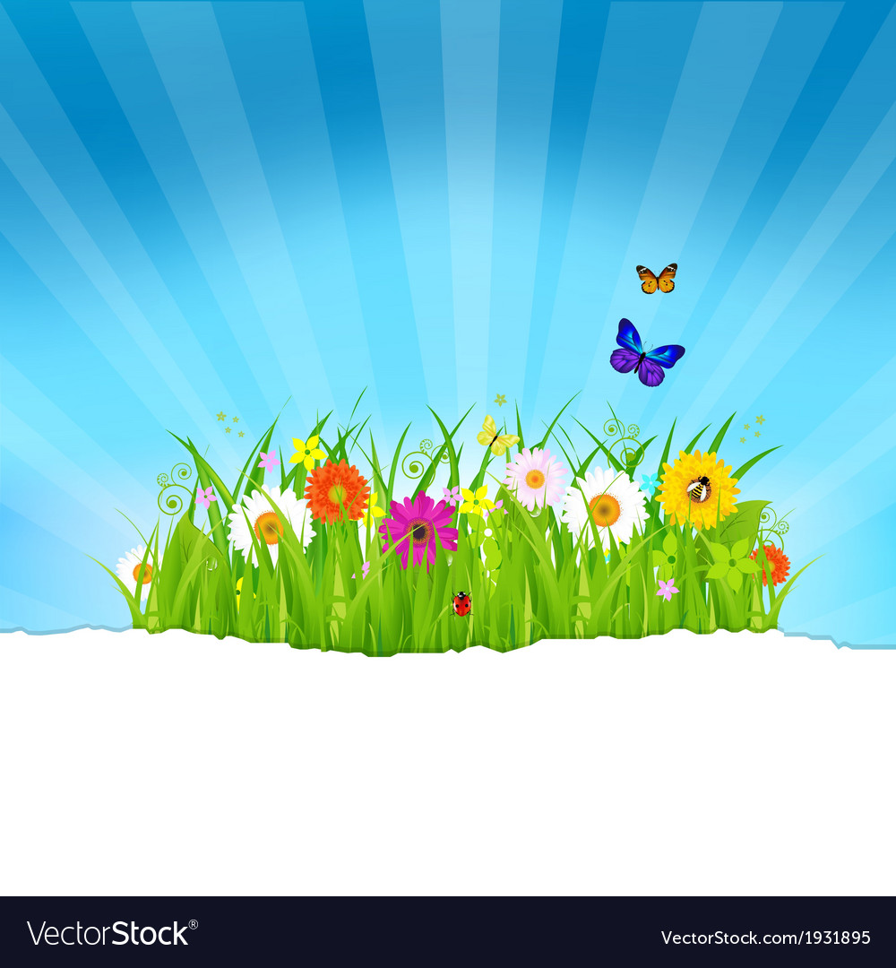 Green grass with flowers and paper vector | Price: 1 Credit (USD $1)
