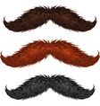 Brown black and ginger isolated mustaches set vector