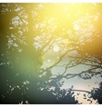 Summer design forest trees nature green wood vector