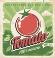 Vintage tomato poster vector