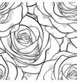 Seamless pattern in roses with contours vector