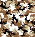 Camouflage desert vector