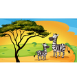 Two zebra under tree vector