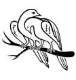 Bird pair vector