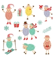 Cute funny sheeps collection vector