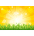 Bright sun effect with green grass field vector