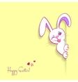 Hiding easter bunny card vector