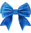 Beautiful isolated blue bow vector