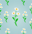 Seamless texture daisy spring blue background vector