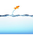 Goldfish and water vector