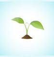 Young plant isolated vector