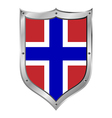 Norway flag button vector