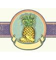 Pineapple vintage label on old paper backgro vector