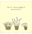 Vintage greeting card with the pot plants collecti vector