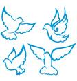 Dove symbol vector