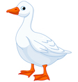 Cartoon goose vector