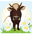 Cow on green field grass and flowers vector