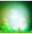 Abstract background with grass  design for print vector