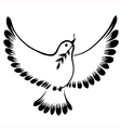 Silhouette of a flying dove peace vector