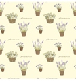 Garden seamless pattern with potted flowers vector