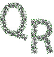 Hand drawing ornamental alphabet letter qr vector
