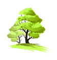 Two trees drawing isolated vector