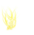 Abstract golden flame vector