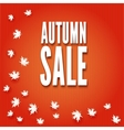 Autumn sale fall leaves vector