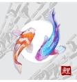 Japanese watercolor carps koi swimming vector