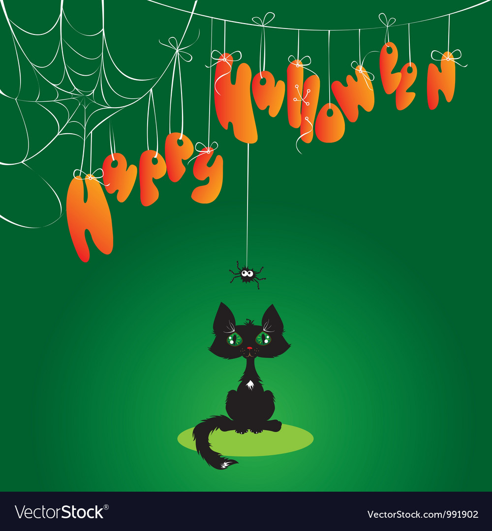 Funny halloween cat and spider vector | Price: 1 Credit (USD $1)