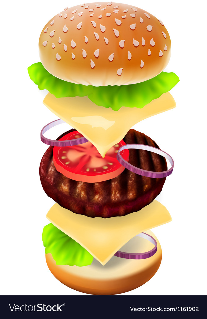 Hamburger - the view of every ingredient vector | Price: 3 Credit (USD $3)