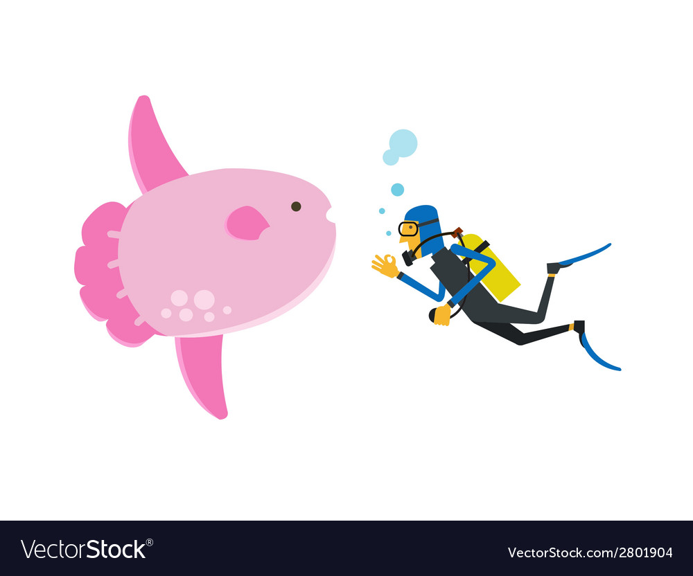 Scuba diving with sunfish vector | Price: 1 Credit (USD $1)
