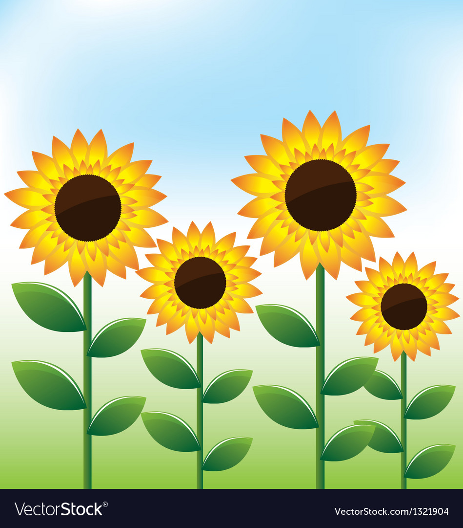 Sunflowers landscape background vector | Price: 1 Credit (USD $1)