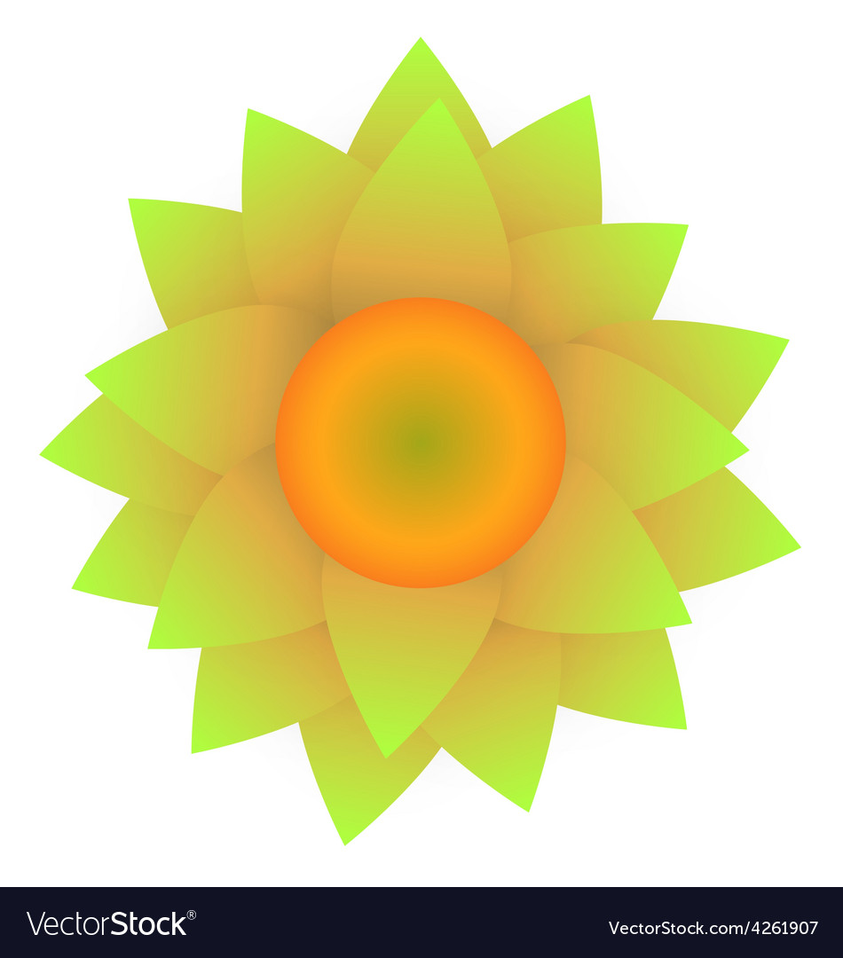 Abstract sunflower isolated on white background vector   Price: 1 Credit (USD $1)