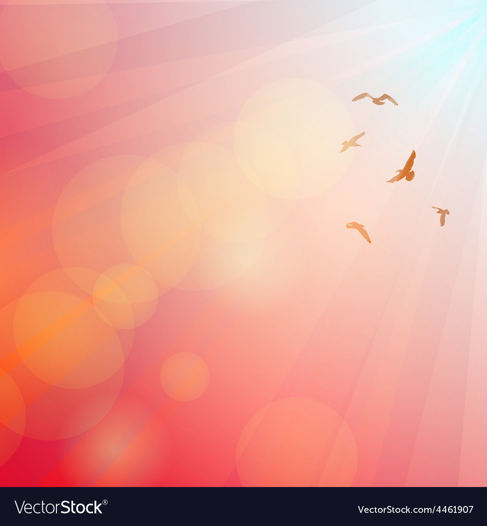 Birds seagulls silhouette in the rays on pink vector | Price: 1 Credit (USD $1)