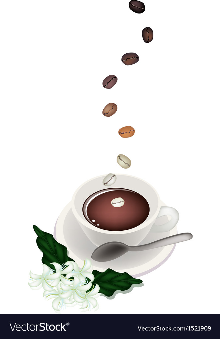 A delicious hot coffee with beans and flower vector | Price: 1 Credit (USD $1)