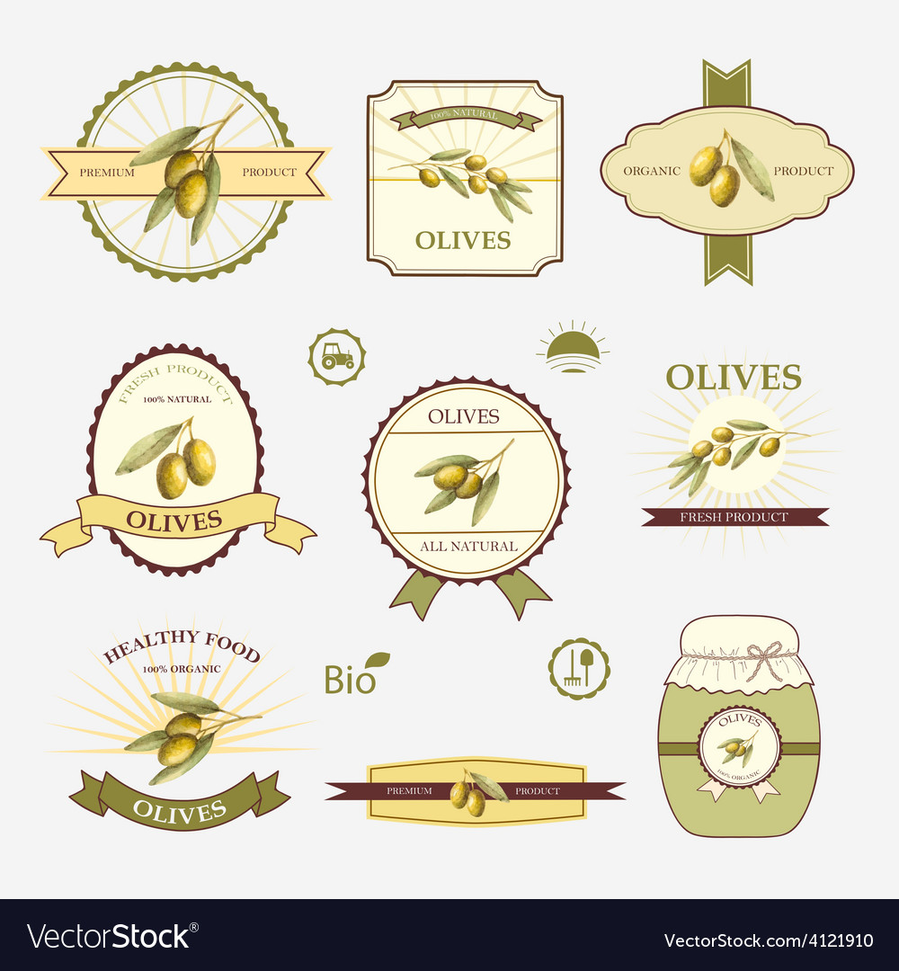 Olives set of label design and templates vector   Price: 1 Credit (USD $1)