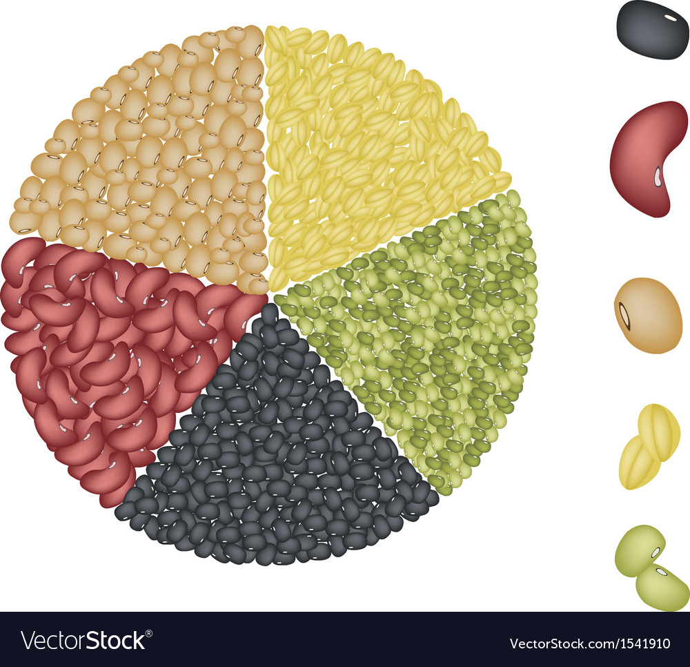 Set of beans in pie chart concept vector | Price: 1 Credit (USD $1)