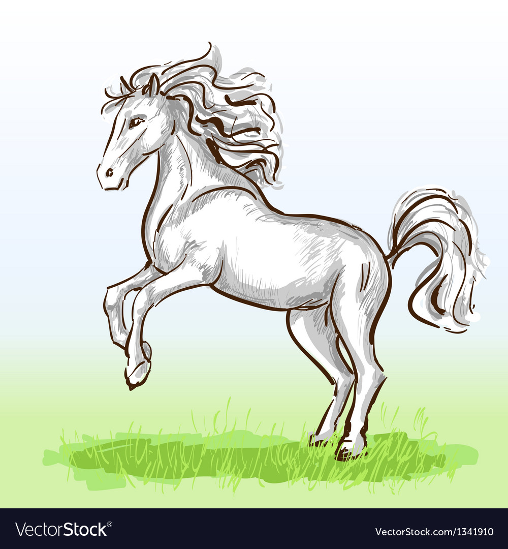 White horse vector | Price: 1 Credit (USD $1)