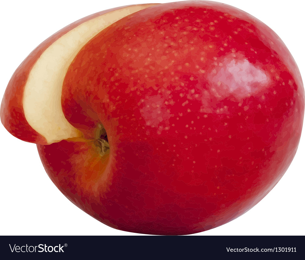 Realistic apple eps10 isolated on white background vector | Price: 1 Credit (USD $1)