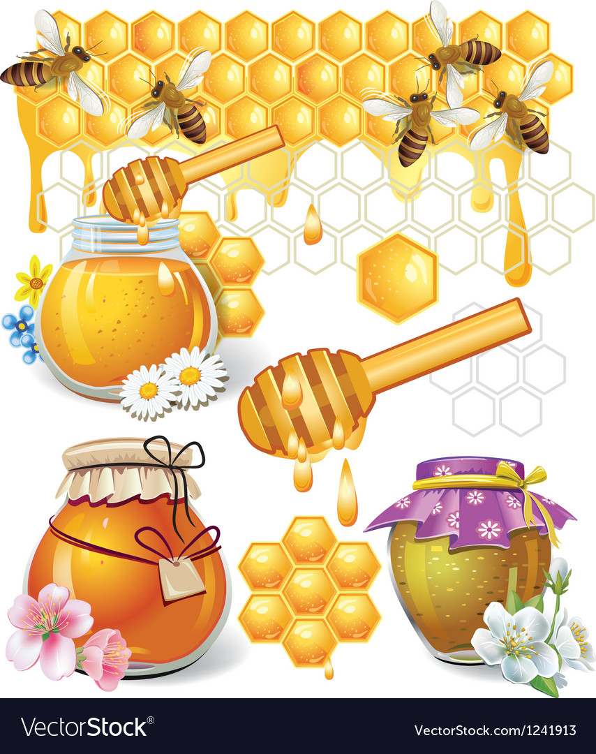 Honey vector | Price: 5 Credit (USD $5)
