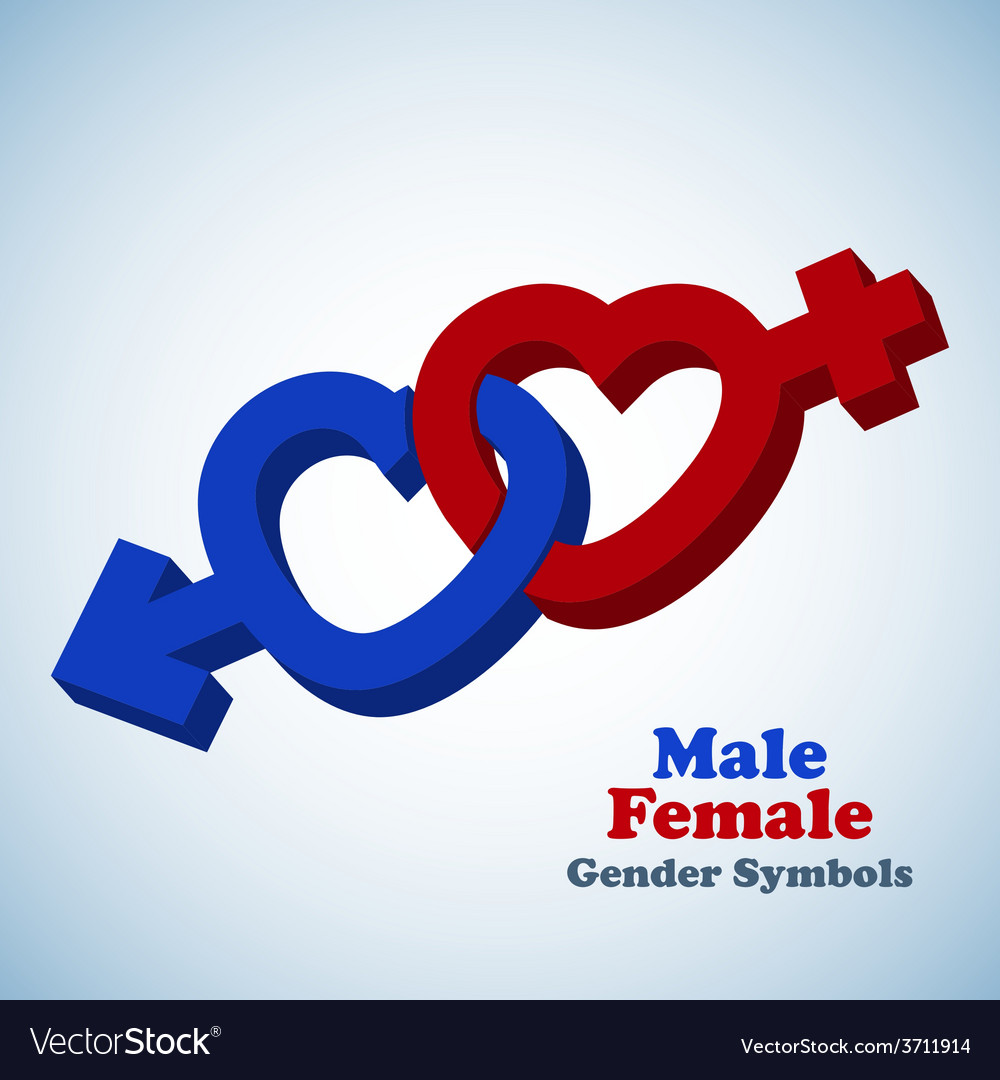 Male and female 3d gender symbols vector | Price: 1 Credit (USD $1)