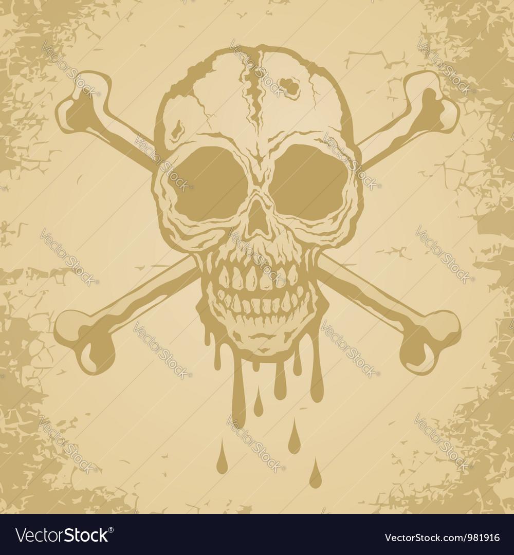 Skull paper vector | Price: 1 Credit (USD $1)