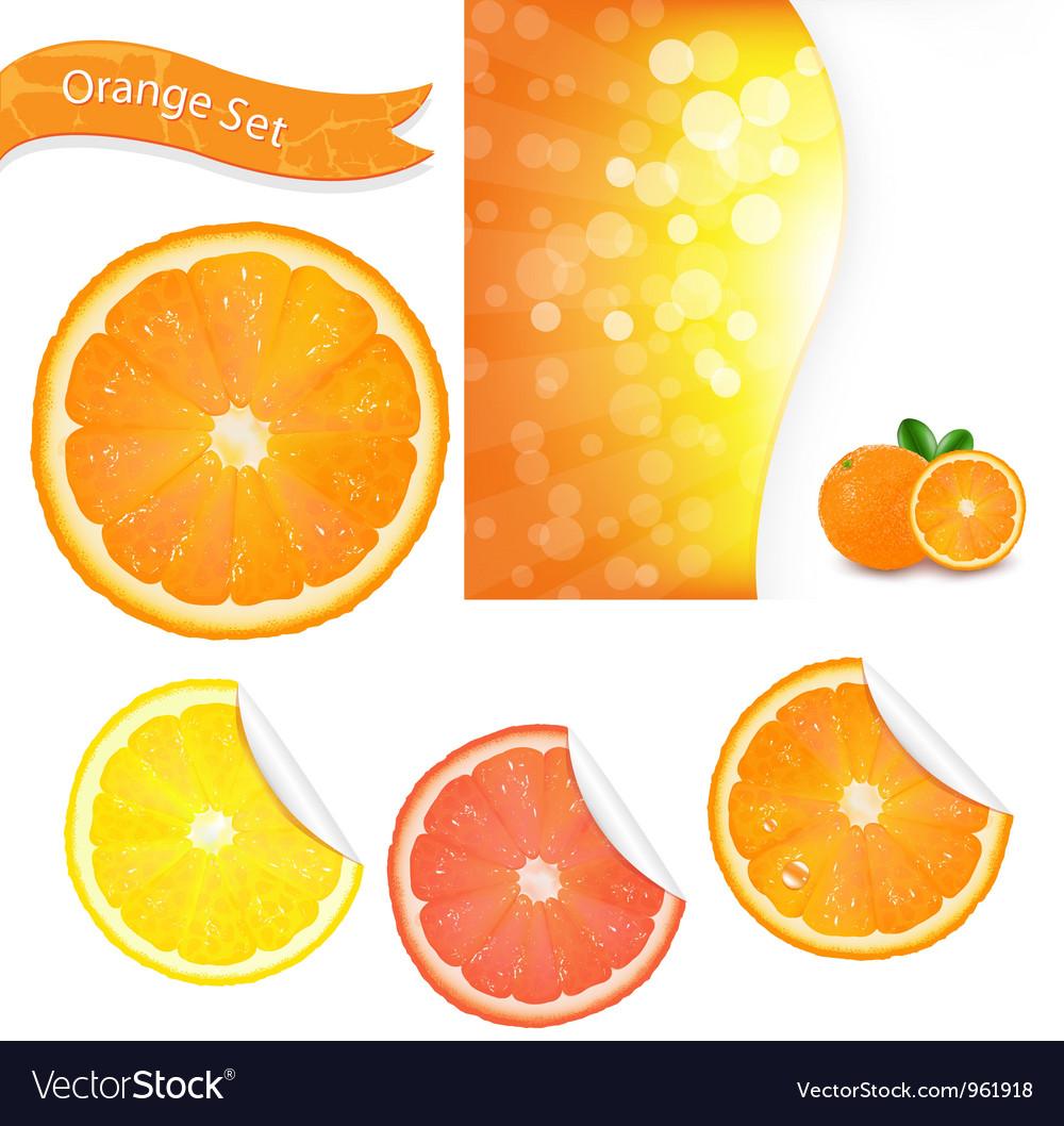 Orange labels vector   Price: 1 Credit (USD $1)