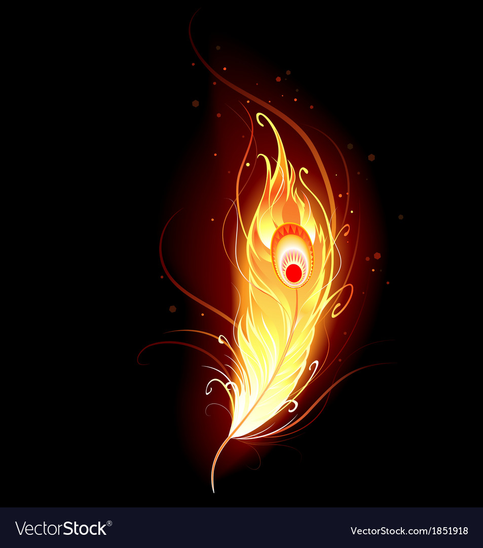 Phoenix feather vector | Price: 1 Credit (USD $1)