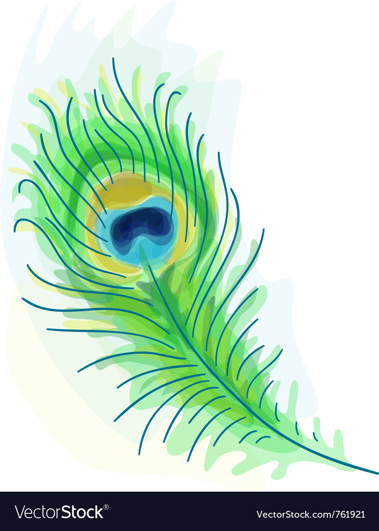 Feather of a peacock vector | Price: 1 Credit (USD $1)