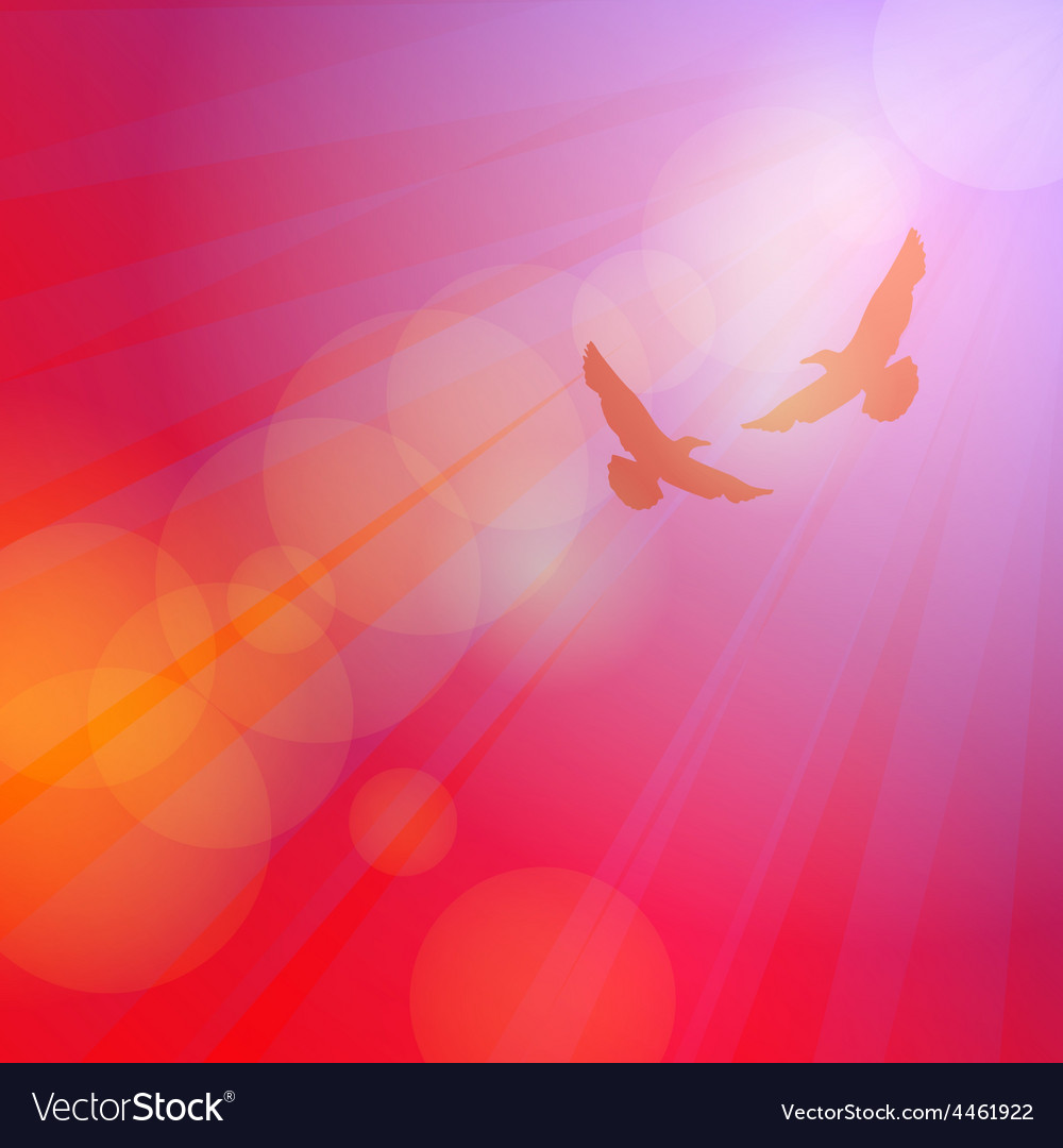 Birds seagulls silhouette on pink background vector | Price: 1 Credit (USD $1)