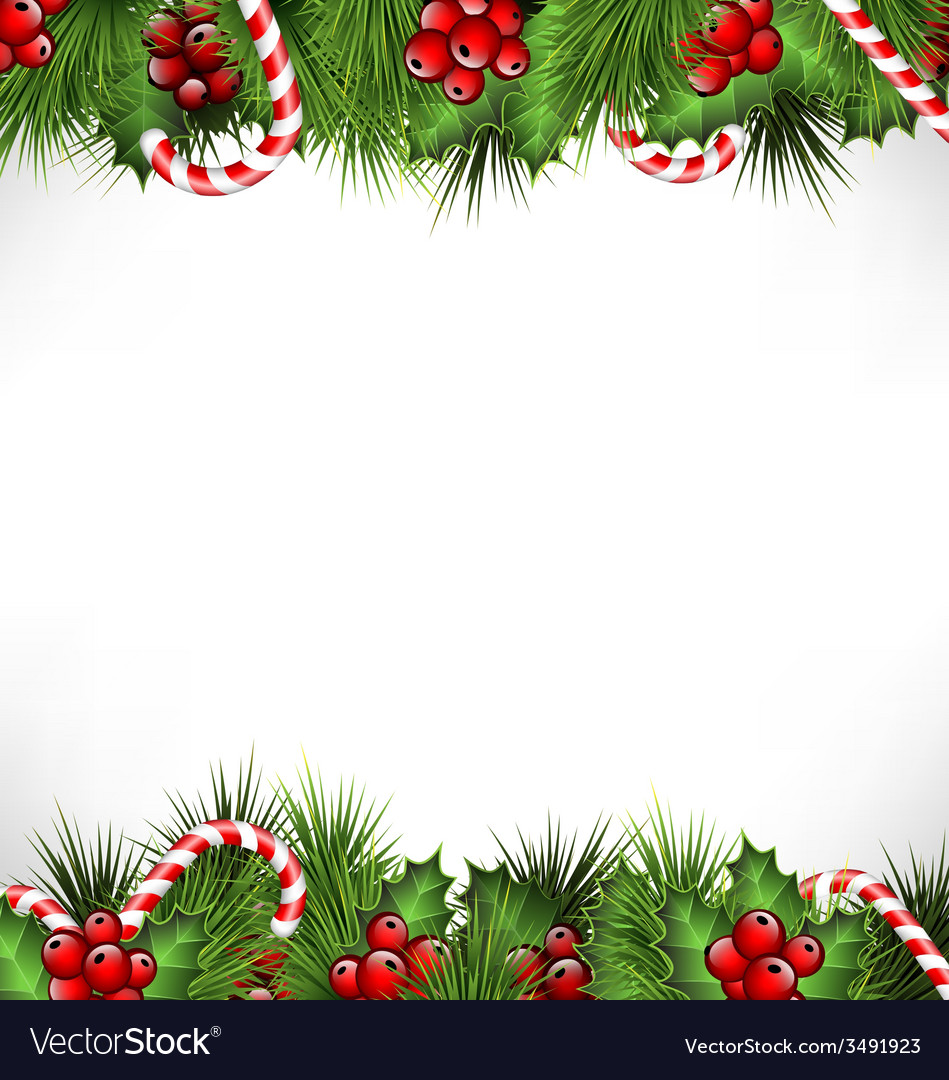 Holly with pine and candys isolated on white vector | Price: 1 Credit (USD $1)